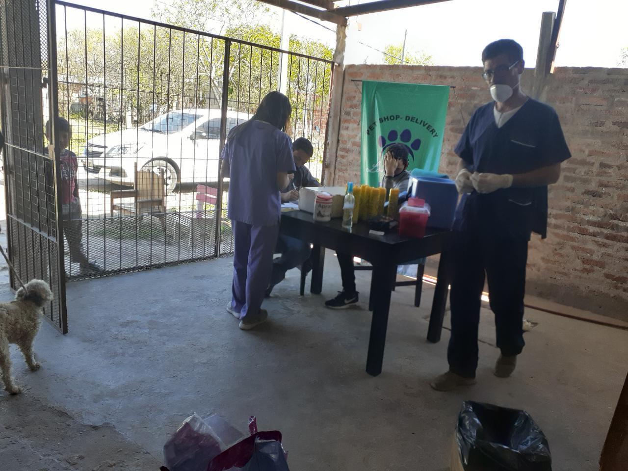 vacunacion-antirrabica-barrio-zampa 2020-09-28