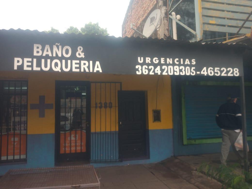 veterinaria- San-Roque 2020-06-18